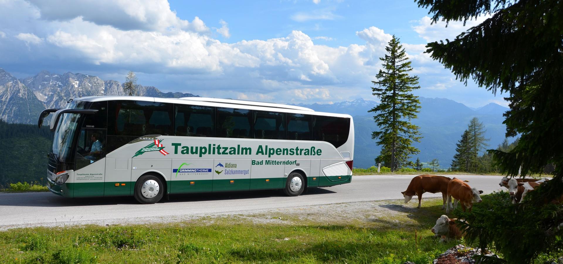Moderne Reisbusse